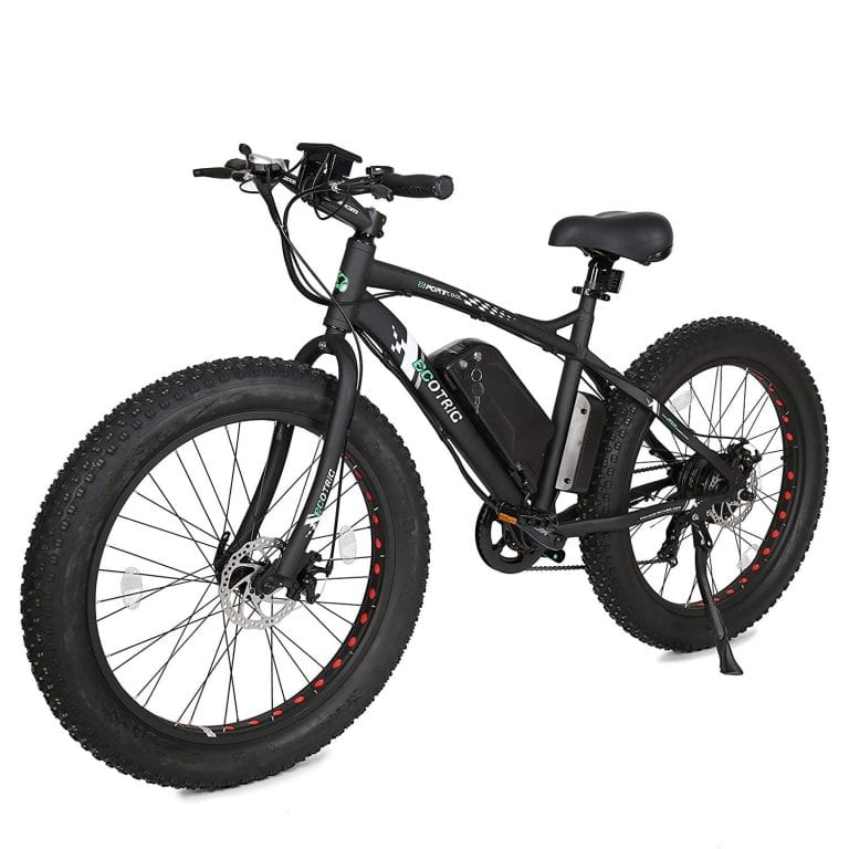 ECOTRIC Flat Tire Electric Bike