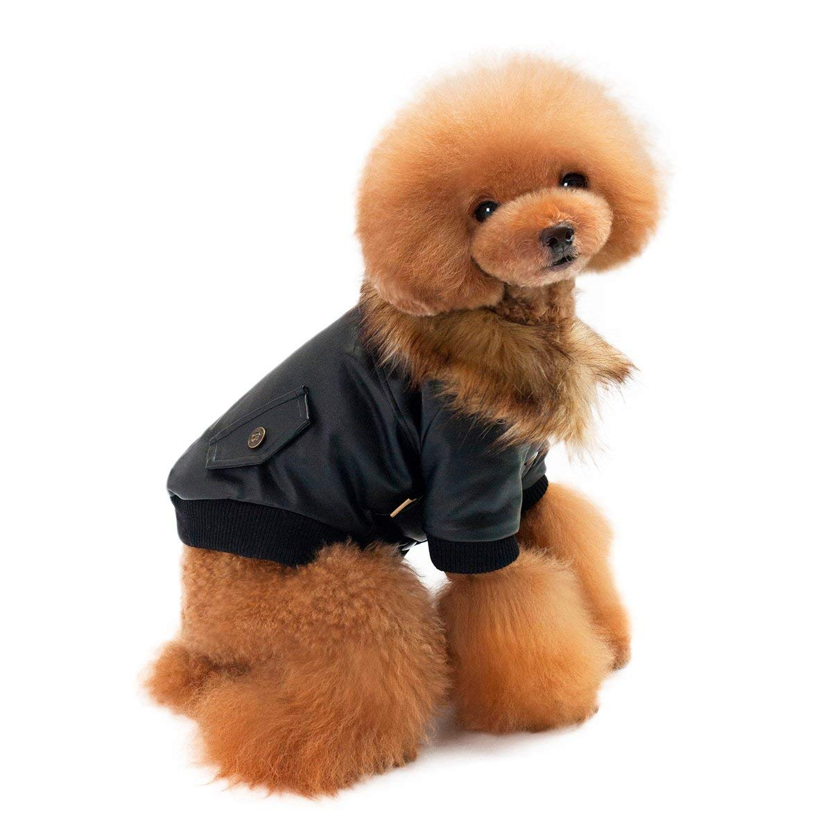 LESYPET Leather Winter Coat Dog Jacket