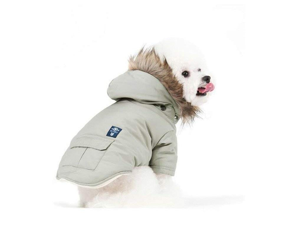 PetBoBo Cat Dog Doggie Jacket