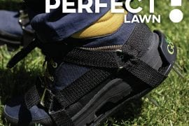 Top 10 Best Lawn Aerator Shoes in 2018 | Buying Guide — For Greener and Healthier Lawns