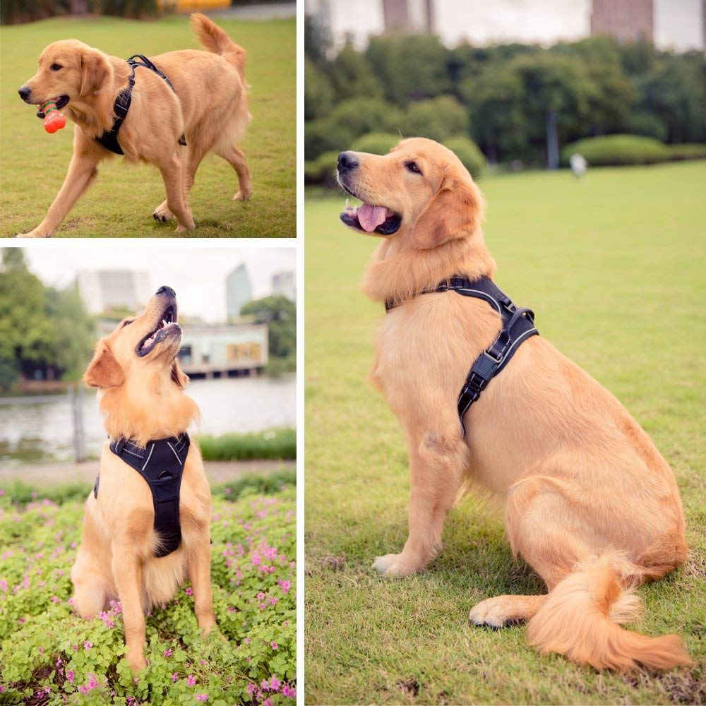 BARKBAY No Pull Dog Harness Large Step in Reflective Dog Harness