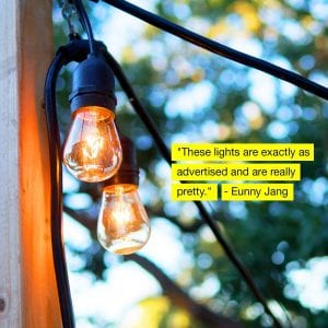 Brightech Ambience Pro Outdoor Incandescent String Lights