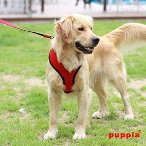 Puppia Dog Harnesses