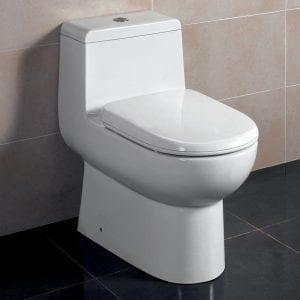Fresca Bath Antila Toilet