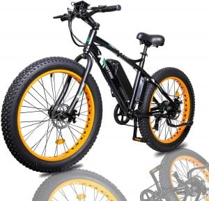 ECOTRIC Fat Tire Electric Bike