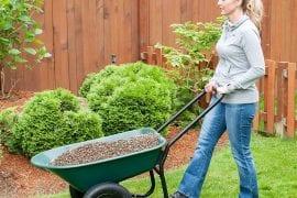 Top Best Garden Cart
