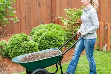 Top Best Garden Cart